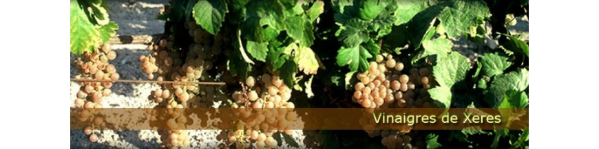 Vinaigres de Xeres-Jerez